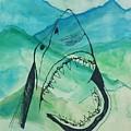 Shark Mountain  by Melissa Solorzano