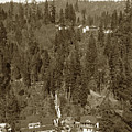 Shasta Springs Station From Inspiration Point, On The Sacramento River by California Views Archives Mr Pat Hathaway Archives