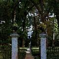 Shaw Mausoleum Grove 2647 Dp_2 by Steven Ward