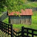 Shed And Fence by Michael L Kimble