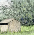 Shed In The Field by David King