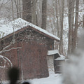 Shed Thru Glass And Snow by Steven Scanlon