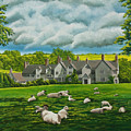 Sheep In Repose by Charlotte Blanchard