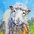Sheep Looking At You With Landscape by Mike Jory