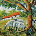 Sheep On The Farm by Richard T Pranke