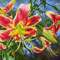 Sheherazade Lilies 1 by Fiona Craig
