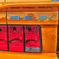 Shelby Tail Light by Mike Martin