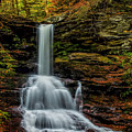 Sheldon Reynolds Falls by Nick Zelinsky