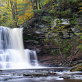 Sheldon Reynolds Falls by Philip LeVee