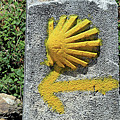 Shell And Arrow Marker, El Camino, Spain by Fran West