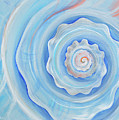 Shell Coral Blue by Paola Correa de Albury