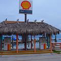 Shell Tiki Hut Station by Tammy Chesney