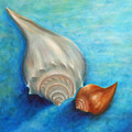 Shells In Blue by Gabriela Valencia