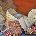 Shells On Shelf by Jodi Higgins