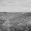 Shenandoah Fall Foliage Bw by Michael Ver Sprill