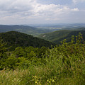 Shenandoah National Park - Skyline Drive by Christina Durity