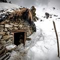 Shepherd Hut by V Naveen  Kumar