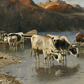 Shepherd With Cows On The Lake Shore by Christian Friedrich Mali