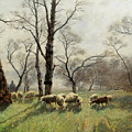 Shepherd With His Flock In The Evening Light by August Fink