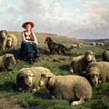 Shepherdess With Sheep In A Landscape by C Leemputten and T Gerard