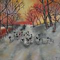 Shepherd's Delight by Teresa Cairns