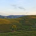 Shepherds Mountain by Adrian Bud