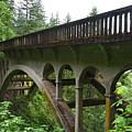 Shepperds Dell Bridge by Ralf Broskvar