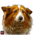 Shetland Sheepdog Dog Art 9973 - Wb by James Ahn