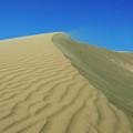 Shifting Dune by Lara Ellis