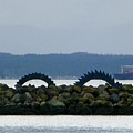 Shilshole Sea Serpent by As the Dinosaur Flies Photography
