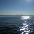 Shimmering Sea by Lori Tambakis