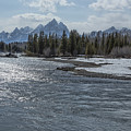Shimmering Snake River And The Tetons by Belinda Greb