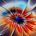 Shining Red Flower by Anastasiya Malakhova