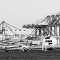 Ship Container Cranes Blk Wht by Cheryl Del Toro
