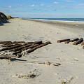 Shipwreck On The Beach by Liza Eckardt