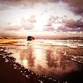 Shipwrecked 2 by Tara Turner