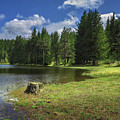 Shiroka Polyana Dam by Tihomir Dimitrov