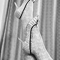 Shoes #6088 by Andrey Godyaykin