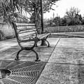 Shoney's Bench by Noel Adams