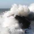 Shore Acres Wave 2 by Vivian Christopher
