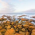 Shore Calm Morning by Jorgo Photography - Wall Art Gallery