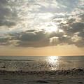 Shore Rays by Amanda Vouglas