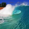 Shorebreaker by Paul Topp