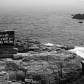 Shoreline And Shipwreck - Portland, Maine Bw by Frank Romeo