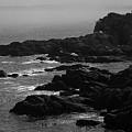 Shoreline - Portland, Maine Bw by Frank Romeo