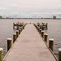 Shoreline View by Mechala Matthews