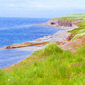 Shores Of Newfoundland by Jeffrey Kolker