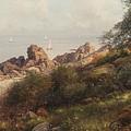 Shorescape by Celestial Images