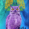 Owl At Night by Joaquin Abella