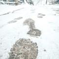 Show Footprints In Snow On Sidewalk Along The Park by Alex Grichenko